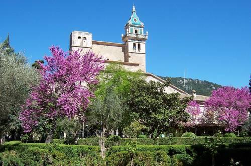 Mallorca im Mai: den Wonnemonat unter der mediterranen Sonne genießen