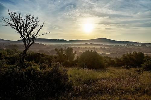 Ruhige Orte auf Mallorca – Balsam für die Seele