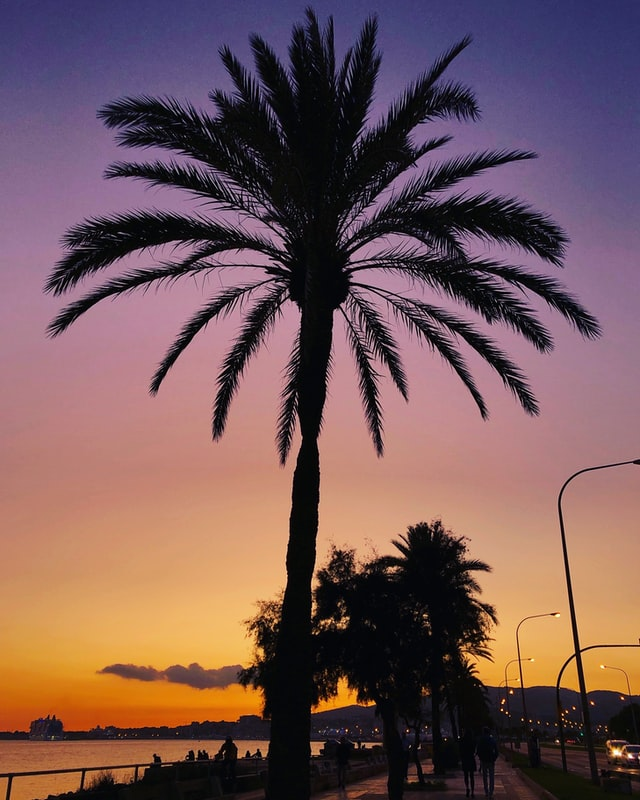 Genova Sonnenuntergang